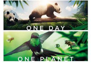 Ziemia. Niezwykły dzień z życia planety @ Kino Elektrownia